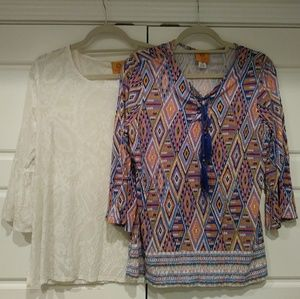 LOT OF 2 RUBY RD PETITE MEDIUM TOPS SHIRTS BLOUSES